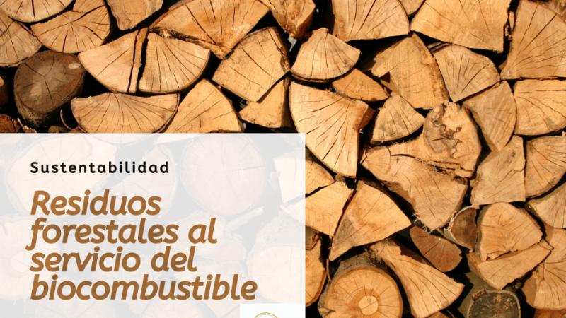 Residuos forestales al servicio del biocombustible