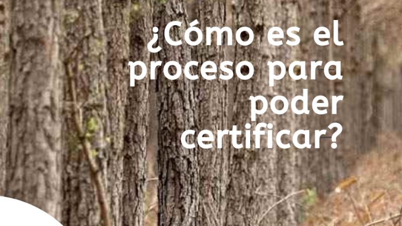 ¿Cómo obtener las certificaciones?