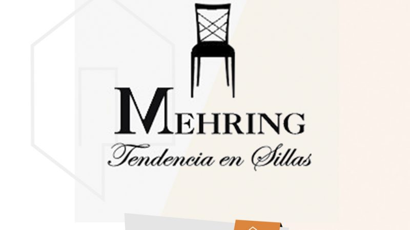 SUC DE G. MEHRING  S.A.